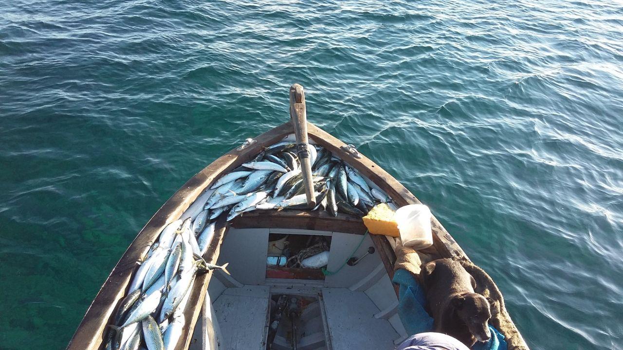 Luca Olivieri turismo esperienziale pesca imperiale